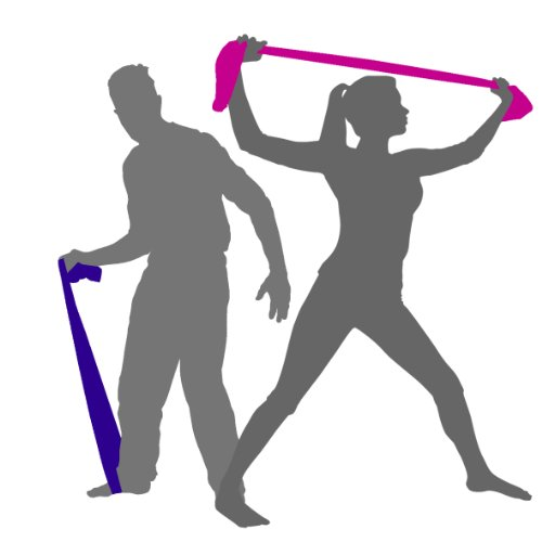 Exercise Resistance Bands Latex Free Safety 2 Metres